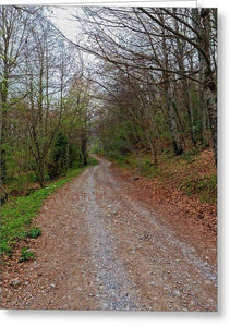 Rural Road In A Forest Of Fuente De - Greeting Card
