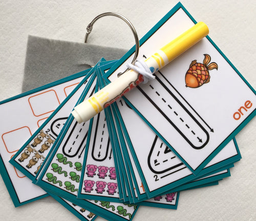 Little Numbers, Dry erase, counting, clip cards, flash cards, laminated, trace, recognition, busy bags, formations, key ring, learn to write