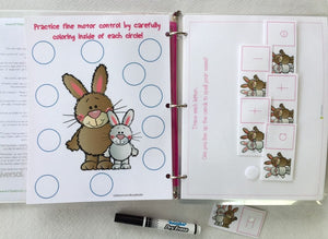 Bunny rabbit Themed Custom Dry Erase Activity Book, Personalized, Busy Book, learning