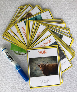 Real Life Pictures Animal Flash Cards, tracing cards, clip cards, montessori animal cards