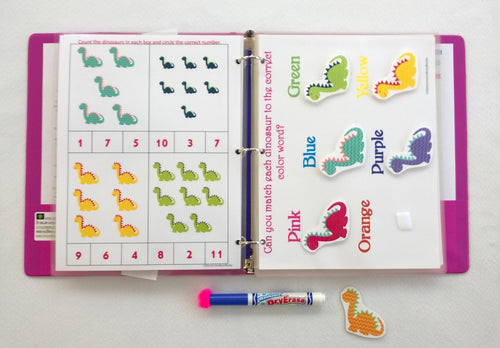Girly Dinosaurs Personalized Busy Book/Quiet Book, Dry erase and  activity book, Custom made for any age, Educational toy, Unique Gift