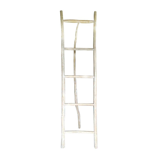 XL Decorative Ladder with Stand