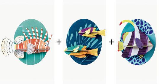 Small Fishes Trio Pack