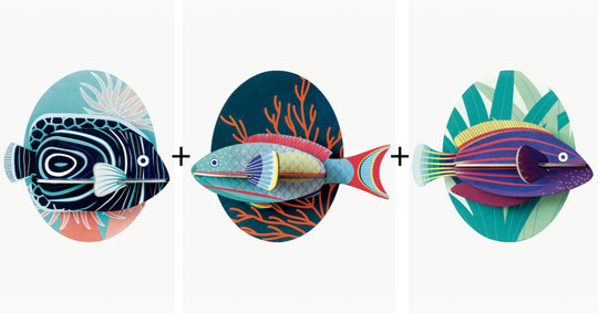 Small Fishes Combo Pack
