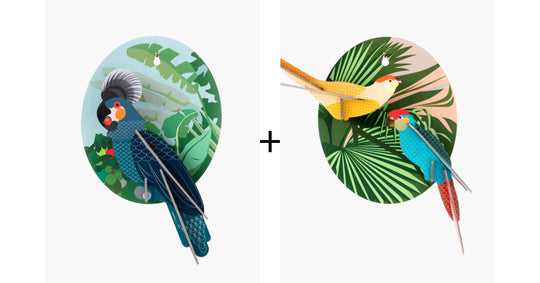 Parrot & Parakeets Combo Pack