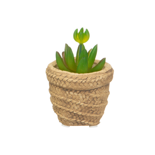 Mini Sierra Cement Basket Planter