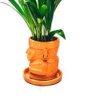 Load image into Gallery viewer, Indio Man Pot 005
