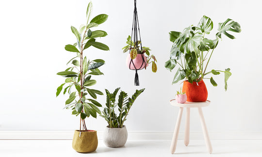 Flower Pot Hanger