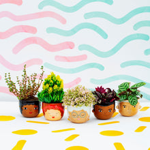Load image into Gallery viewer, Chantelle Mini Planter