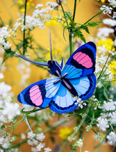 Load image into Gallery viewer, Peacock Butterfly