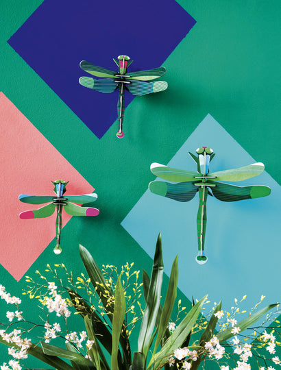 Dragonflies, set of 3
