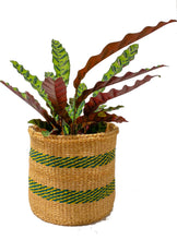 Load image into Gallery viewer, Hadithi basket Natural/Green/Yellow