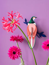 Load image into Gallery viewer, Paradise Bird Flores