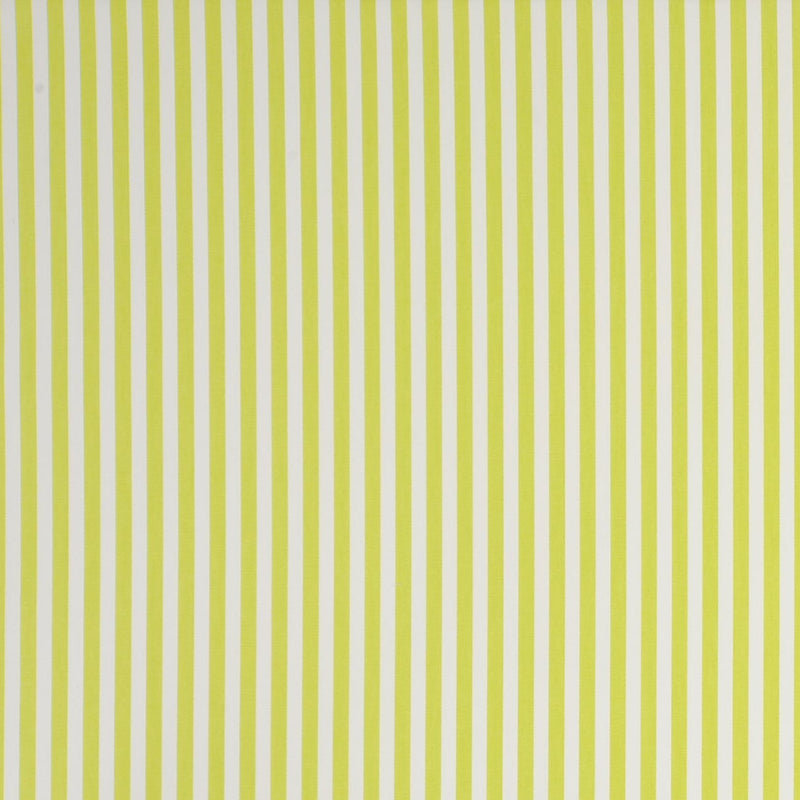 Party Stripe - Citrus