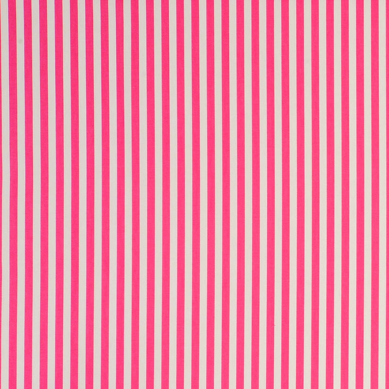 Party Stripe - Raspberry