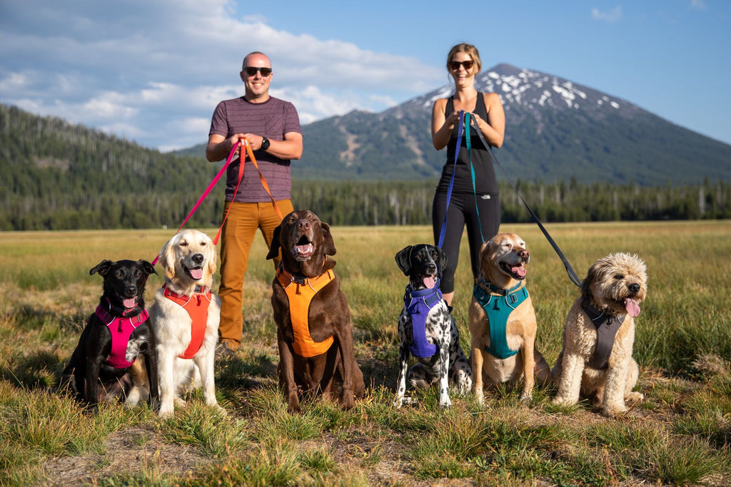 The New Front Range collection from Ruffwear