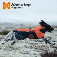 How to keep your dog warm & comfortable in winter