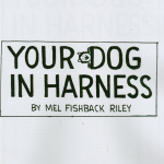 Your Dog In Harness