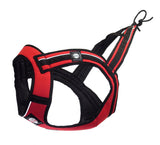 Euro Long Harness, (Zero DC)