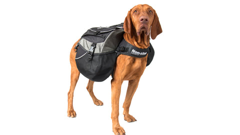 Amundsen Dog Backpack (Non-Stop Dogwear)