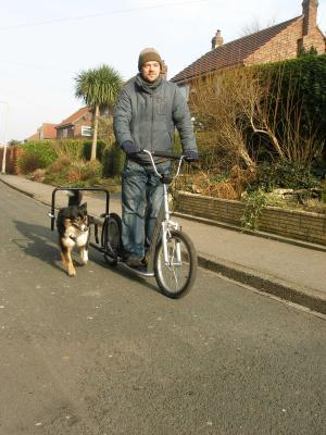 Pawtrekker Single Sidewalker Attachment - NEW STOCK ARRIVING JUNE 2020