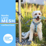 Nordic Lights Mesh Y Harness (Finnero)