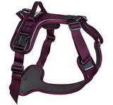 NEW Ramble Harness (Non-Stop Dogwear)
