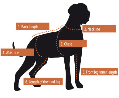 Measuring Guide to a Hurtta Dog Harness