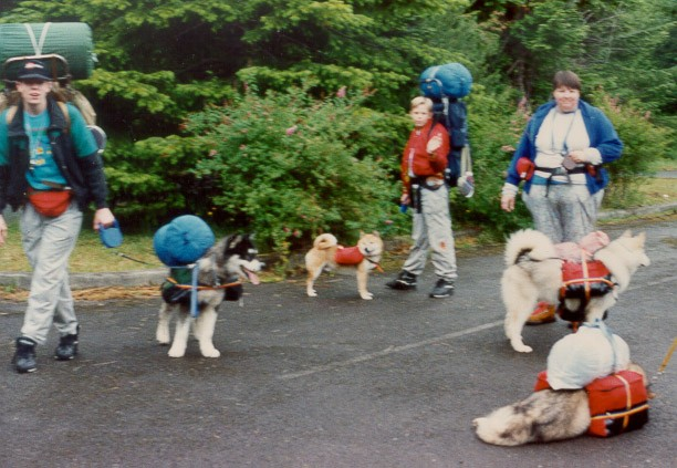 This photo is the Riffle family-older son Random with Can. Ch. Kooskia's Target of Rtrek WPD (Target), younger son Shea with Shiba Benzaiten's Rtrek Kajo to Kori (Dusty), myself with Rtreks Seattle Sioux WWPD, WPD, WTD (Susie), and Rtreks A Touch of Trouble WWPD, WPD, WTD (Trouble--leader on our team for many years). We are going on a club sponsored pack trip--packing for certification. Taken summer of 1990 in the National forest near Mt. Rainer, WA.