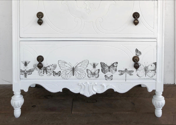 Buy IOD Butterflies Decor Stamp - New Fall 2019 Iron Orchid Designs Release