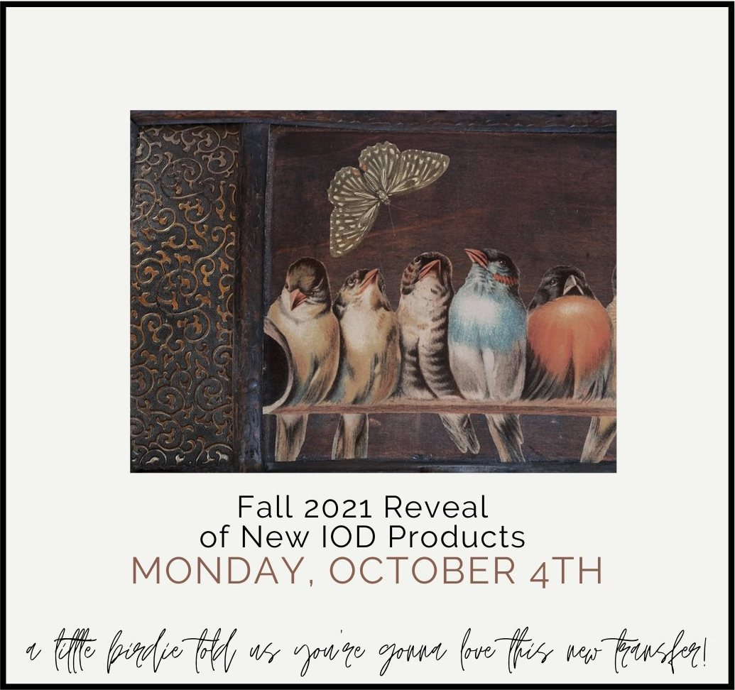 IOD Fall 2021 Reveal of New Products