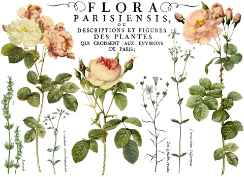 "I.O.D. Flora Parisiensis Decor Transfer (24""x33"") by Iron Orchid Designs @ The Painted Heirloom"