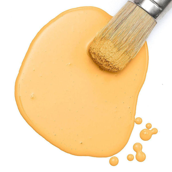 Mod Mustard Milk Paint by Fusion