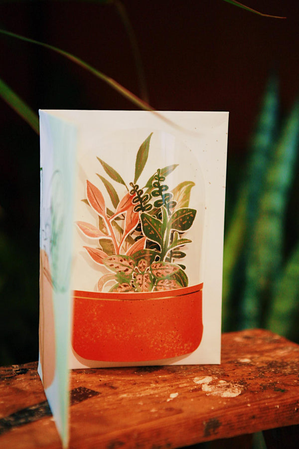 Terrarium Pop Up Card