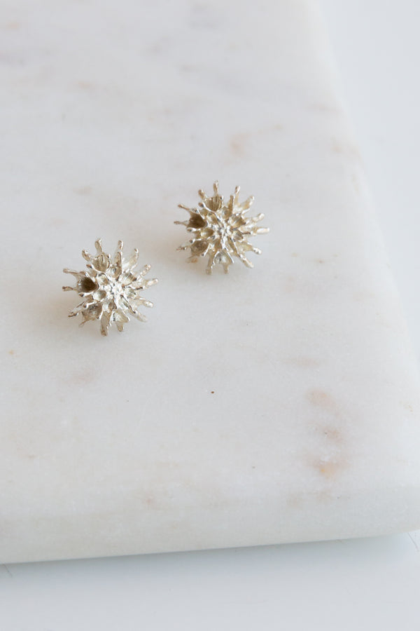 Kirsten Muenster Star Pod Earrings