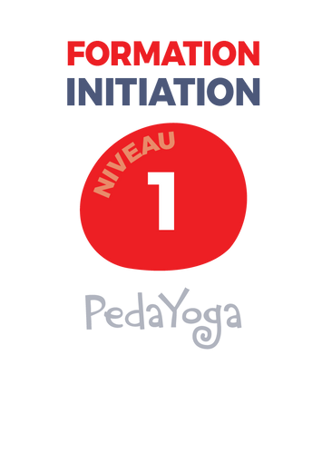 Formation initiation (6 heures)