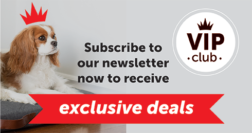 Subscribe to our newsletter now to receive exclusive deals