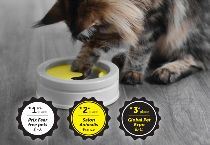 interactive-bowl-Intellikatt-for-cats-french