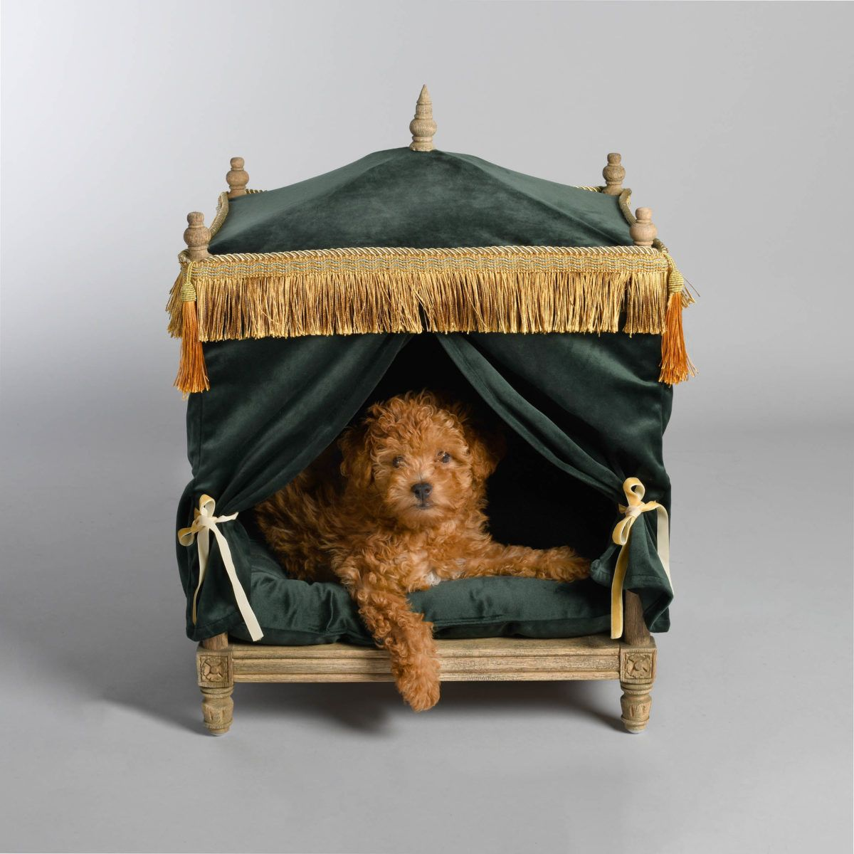 lord Lou the Edward pet bed at lords and labradors