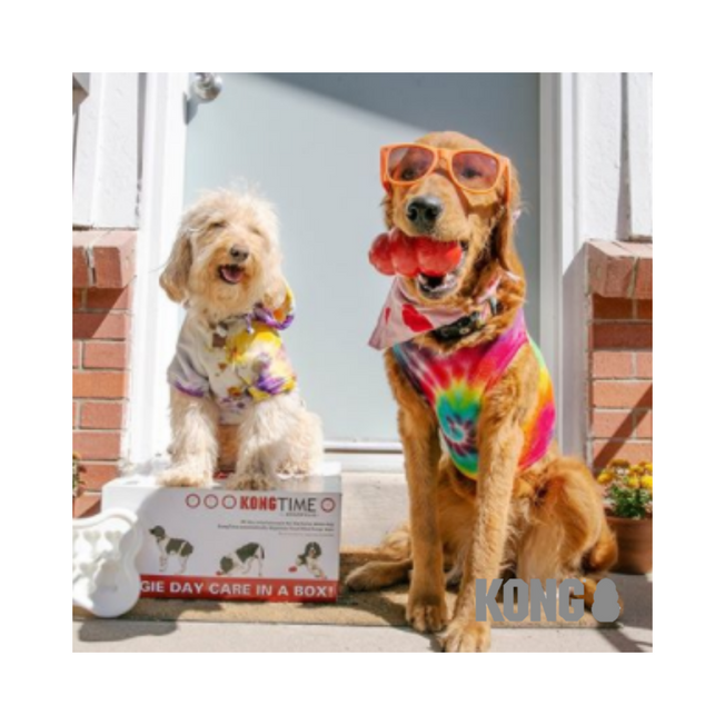 kong-toys-for-dogs-&-cats