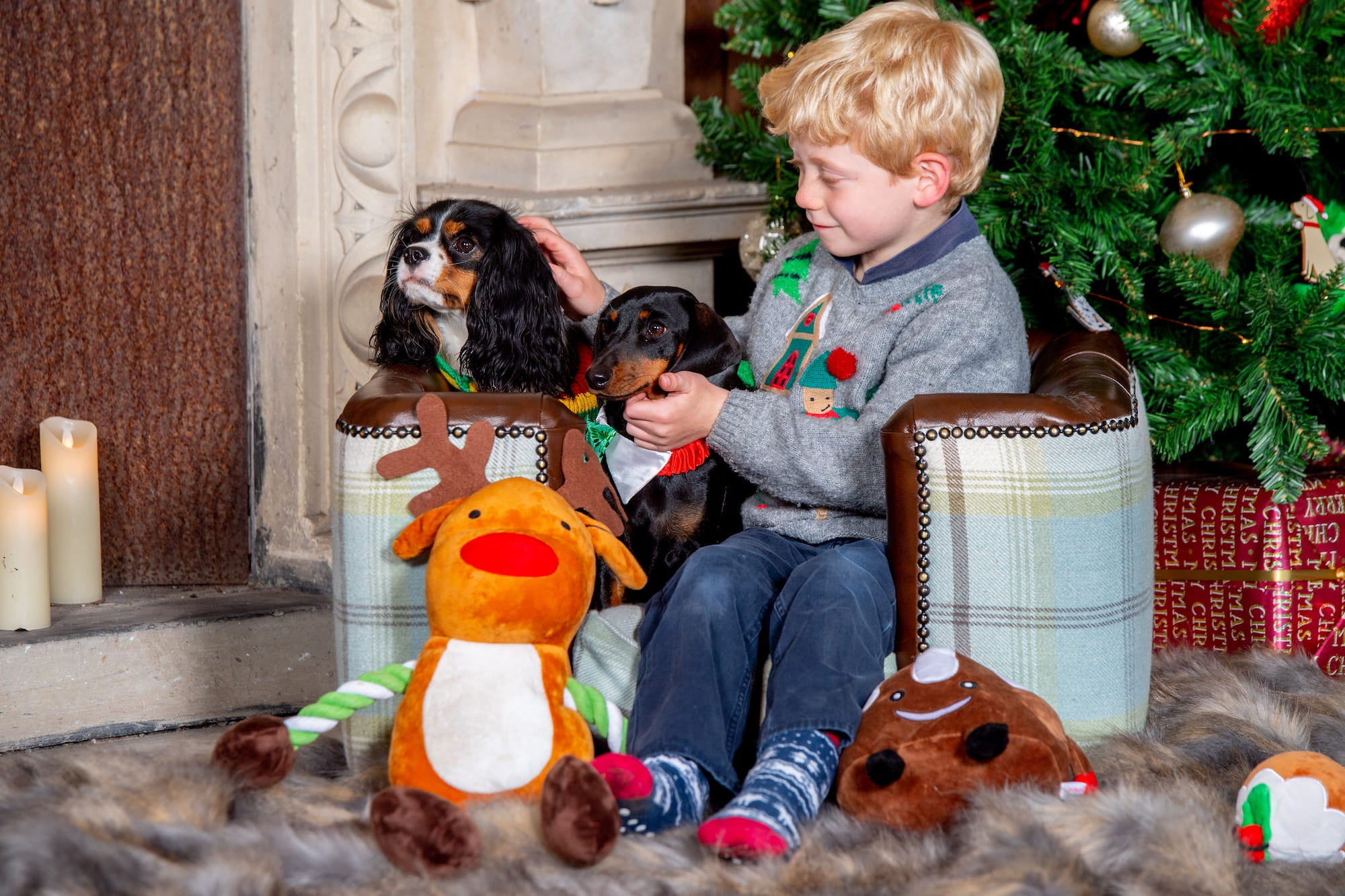 Little boy sits with his dog surrounded bu a christmas and lots of dog toys from Lords & labradors.