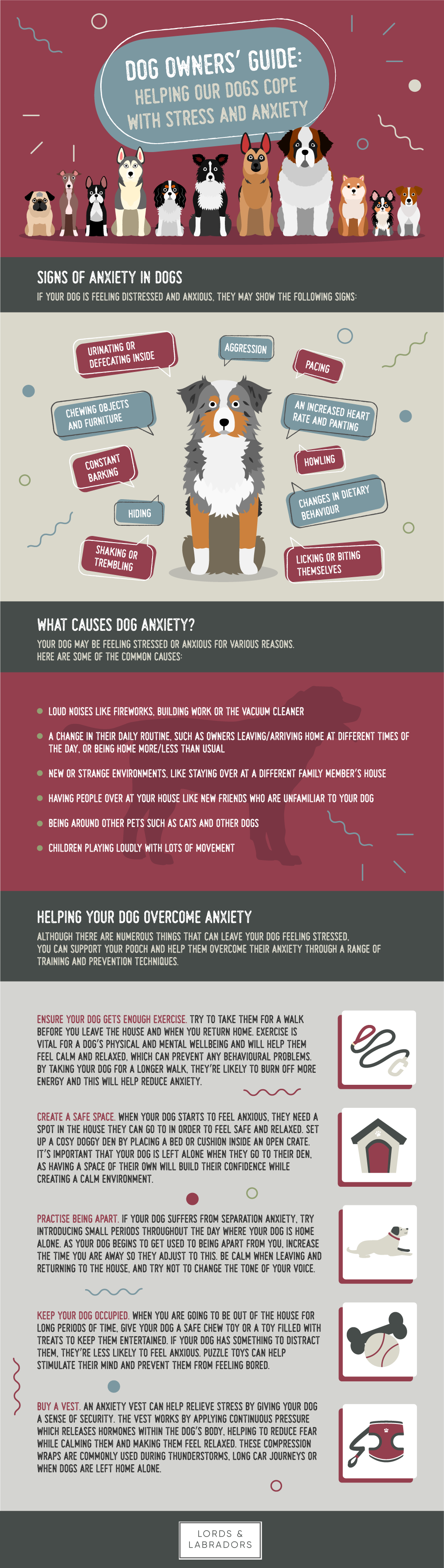 Dog Owners Guide to Helping Dogs with stress and anxiety