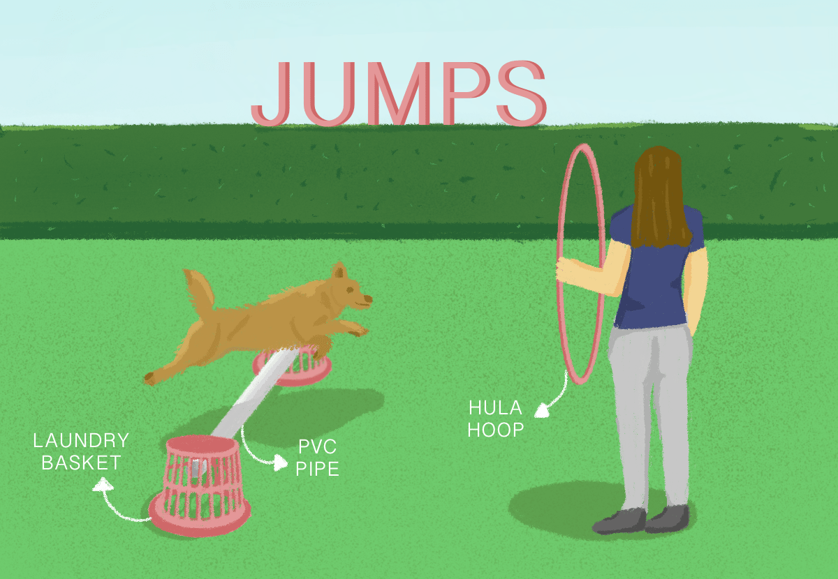 illustration showing a dog owner teaching her dog to jump through a hoop and over a hurdle