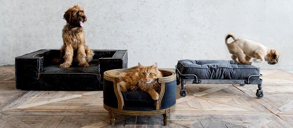 Lord Lou - luxury beds and accessories for cats and dogs.