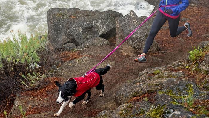 woman runs with her dog on a roamer leash