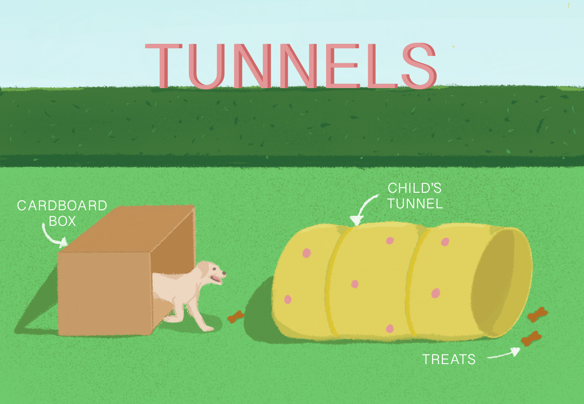 illustration showing a dog owner teaching their dog to run through a tunnel