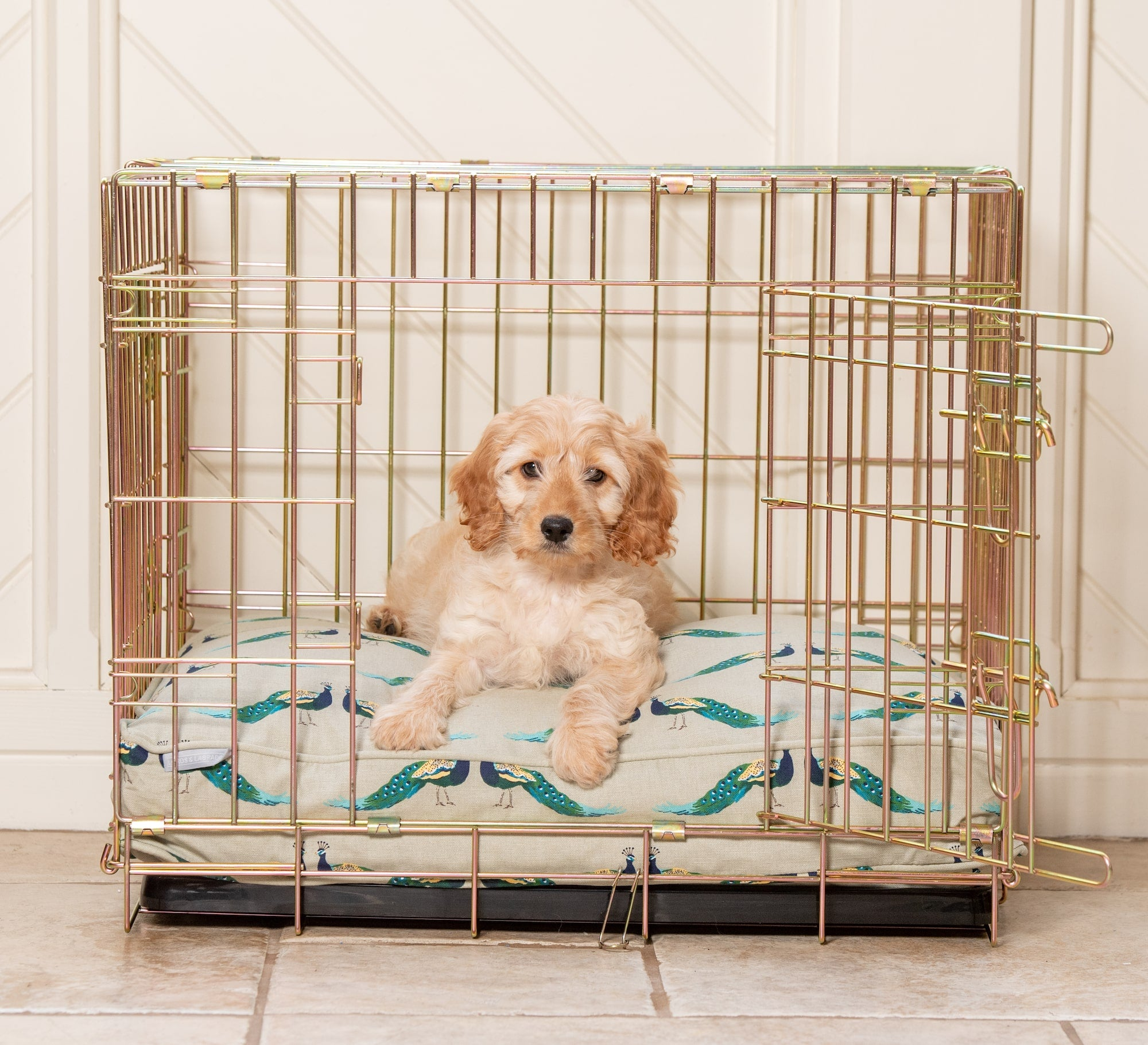 Cockapoo sitting in a dog crate with a dog cushion made by Lords & Labradors in Sophie Allport Peacock fabric