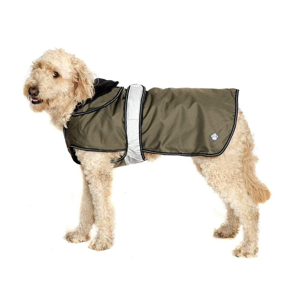 A white curly haired dog wearing a Danish Design Ultimate 2-in-1 dog coat