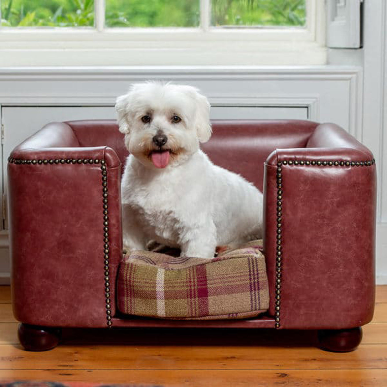 Leather Chesterfield for dogs by Lords & Labradors