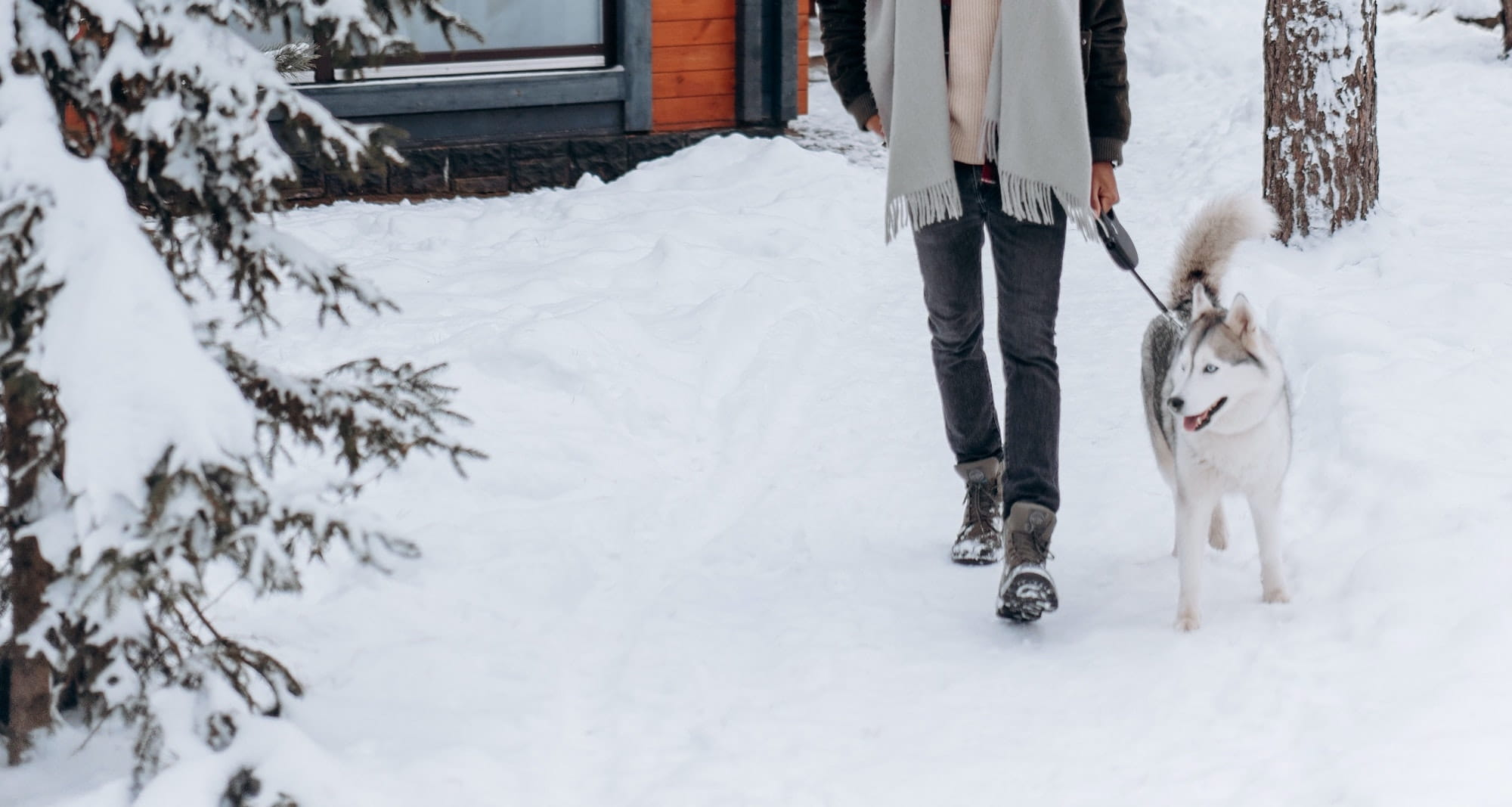 A dog and his owner walking in the snow
